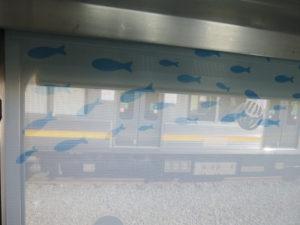 ロールスクリーンの魚